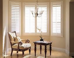 Living Room Blinds Blinds For Living Room Windows Stunning Window Blinds And Shades
