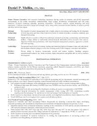Professional Financial And Controller Resume Example With Work