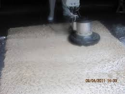 tampa bay rug cleaning