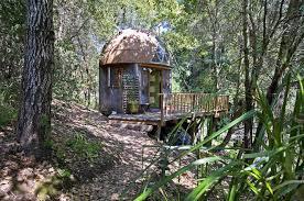 Best 25 Treehouse Hotel Ideas On Pinterest  Amazing Tree House Treehouse Vacation California