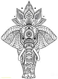 Animal Mandala Coloring Pages With Coloring Books And Pages Splendid