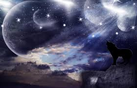 wolf howling wallpaper. Brilliant Howling Wolf Howling Wallpaper By Zeffy101  On Wallpaper