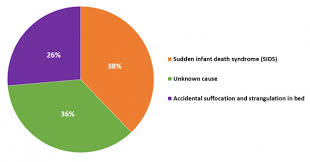 Deaths Causes Pie Chart Medium First Candle