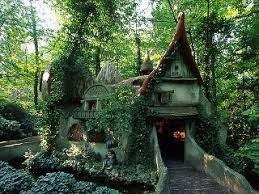 Ivy covered house