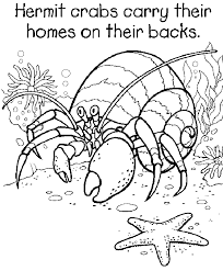 Small Picture Hermit Crab Coloring Page Preschoolsea Life Coloring Home
