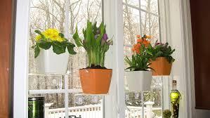 indoor window garden. amazon.com: aquaphoric indoor garden kit \u2013 self watering planter + window shelf fiber soil \u003d thriving herbs, vegetables, flowers. unique home l
