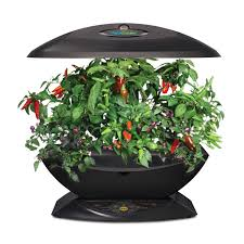 Indoor Kitchen Gardens Amazoncom Miracle Gro Aerogarden 7 With Gourmet Herb Seed Kit