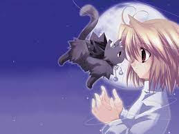 Cute Anime Cat Wallpaper - Cute ...
