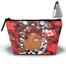 amazon cosmetic bags canada marmot makeup bag with brush pouch portable zipper tzoidal strorege bag for and woman necessary beauty