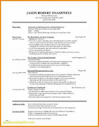 17 Resumes Online