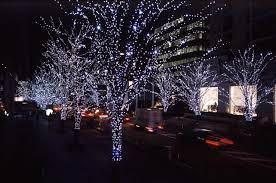 Những ý tưởng treo dây đèn LED trang trí ngoài trời - Ánh Sáng Mỹ Thuật