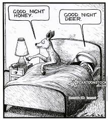 Animal puns goodnight Porpoise Word Pun Cartoon 15 Of 71 Cartoonstock Word Pun Cartoons And Comics Funny Pictures From Cartoonstock