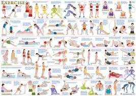 Multi Gym Wall Chart Weight Lifting Exercises Online Charts Collection
