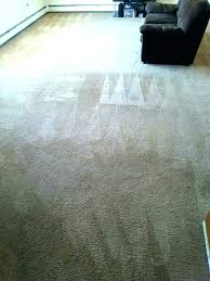 area rugs naples florida rug cleaning ideas carpet fl cleaners yelp oriental area rugs naples