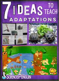 Plant And Animals Adaptations Venn Diagram 7 Ideas To Teach Animal Adaptations The Science Penguin