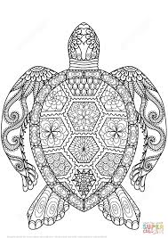 turtle zentangle coloring page free printable coloring pages color print