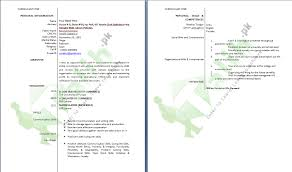 Professional Cv Format Download Professional Cv Format In Ms Word Doc Free Download Pdf
