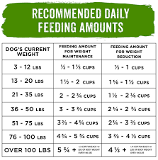 Purina Beneful Puppy Feeding Chart Beneful Feeding Chart Goldenacresdogs Com