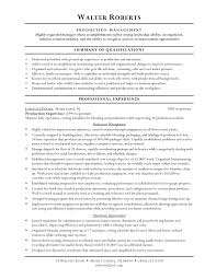 Warehouse Summary For Resume Resume For Study