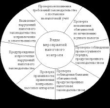 субъекты финансового контроля их функции и задачи  Налоговые органы наделены широким кругом контрольных полномочий и прав по применению мер принудительного воздействия к нарушителям налогового