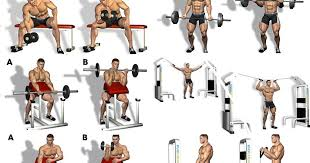 Want Big Biceps Heres How To Get Them Fitness And Power