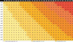 Womans Weight Chart Womens Weight Chart For Over 50 Easybusinessfinance Net