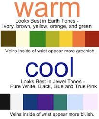 Warm Cool Color Chart 27 Best Warm Vs Cool Colors Images Seasonal Color Analysis