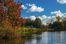 The Morton Arboretum, Peaceful Lake Visions ©Anne Lacy | Beautiful lakes,  Fine art america, Lake