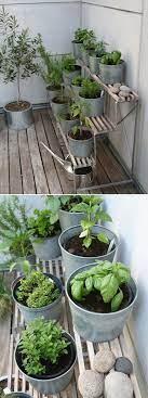 look terraced herb garden diy herb