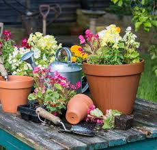 container gardening owen getty images it seems self watering