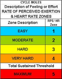 Silver Sneakers Perceived Exertion Chart 14 Best Level 2 Gym Instruction Manual Images In 2019