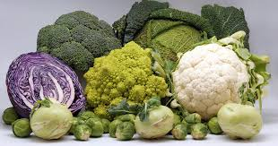 "Image result for vegetables ""org"""