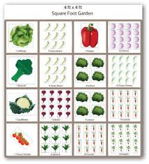 Small Picture Basic Vegetable Garden Design Plans and Tips