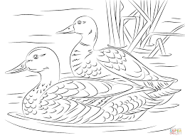 Small Picture duck coloring pages for toddlers Archives Printable Coloring