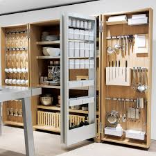 Kitchen Storage Furniture Furniture Popular Kitchen Storage Ideas Stunning Kitchen Storage