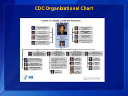 Cdc Organizational Chart Dght Cdc Organization Chart Related Keywords Suggestions