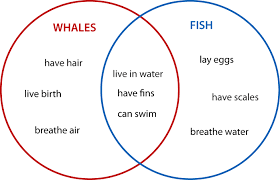 Online Venn Diagram Practice Create Venn Diagram Worksheets Venn Diagrams Animals 2 Set Venn