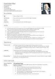 Mcdonalds Work Experience Resume Fast Food Cashier Resume Resume