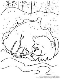 hibernating bear color sheet create a printout or activity