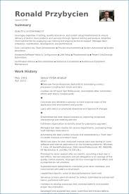Business Systems Analyst Resume Template Ceciliaekici Com