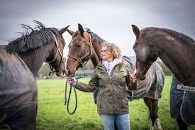 Een Paard Oordeelt Niet Bramas Coaching