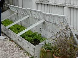 cold frame gardening. Wonderful Gardening Image Source Fortikurcom In Cold Frame Gardening I