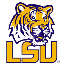Image result for lsu logo