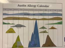 Austin Allergy Season Chart Were Basically In One Constant State Allergy Found This