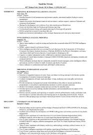 Intelligence Analyst Resume Examples Principal Intelligence Analyst Resume Samples Velvet Jobs 15