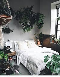 Pflanzen Fürs Schlafzimmer Bkk24 Pflanzen Im Schlafzimmer Mit