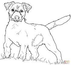 Boston Terrier Coloring Page | jacb.me