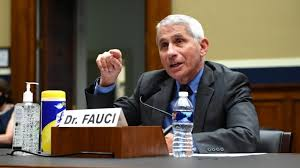 Dr Fauci: 'We're now seeing a disturbing surge of infections' - BBC News