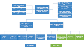 Punctual Ups Organizational Structure Chart How To Structure