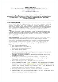 Business Resume Format Magnificent Skills Resume Examples From Business Resume Format Fresh Lovely Pr